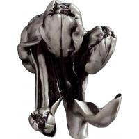 Крючок Art&Max Tulip AM-0822-T